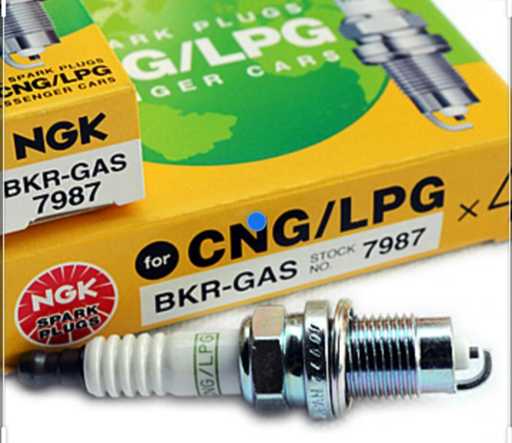 Газовые свечи для Skoda Rapid с ГБО