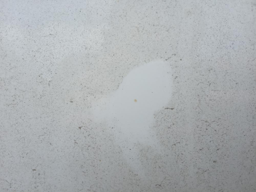 """""""Паучки"""" на кузове Рапид от прилипшего песка"""